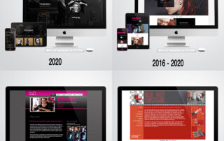 Redesign website Hylke na update Wordpress